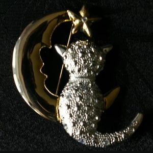 Cat Moon Brooch AAI Pin